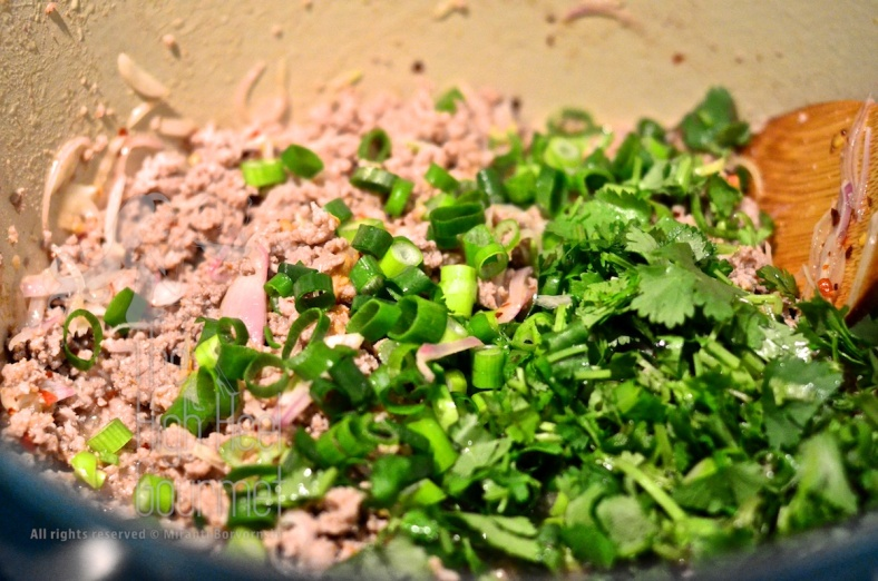 Thai Spicy Beef Salad Larb by The High Heel Gourmet 2