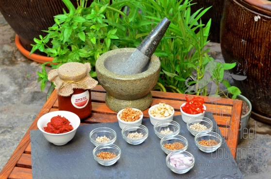 Advance Thai Red Curry Paste by The High Heel Gourmet 2