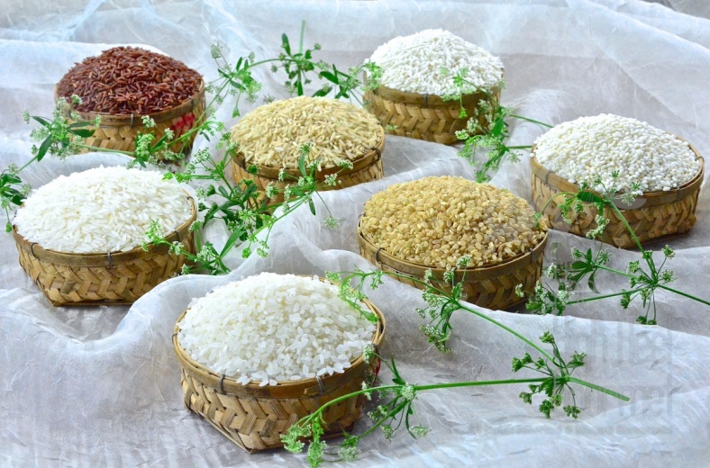 All About Rice by The High Heel Gourmet (1)